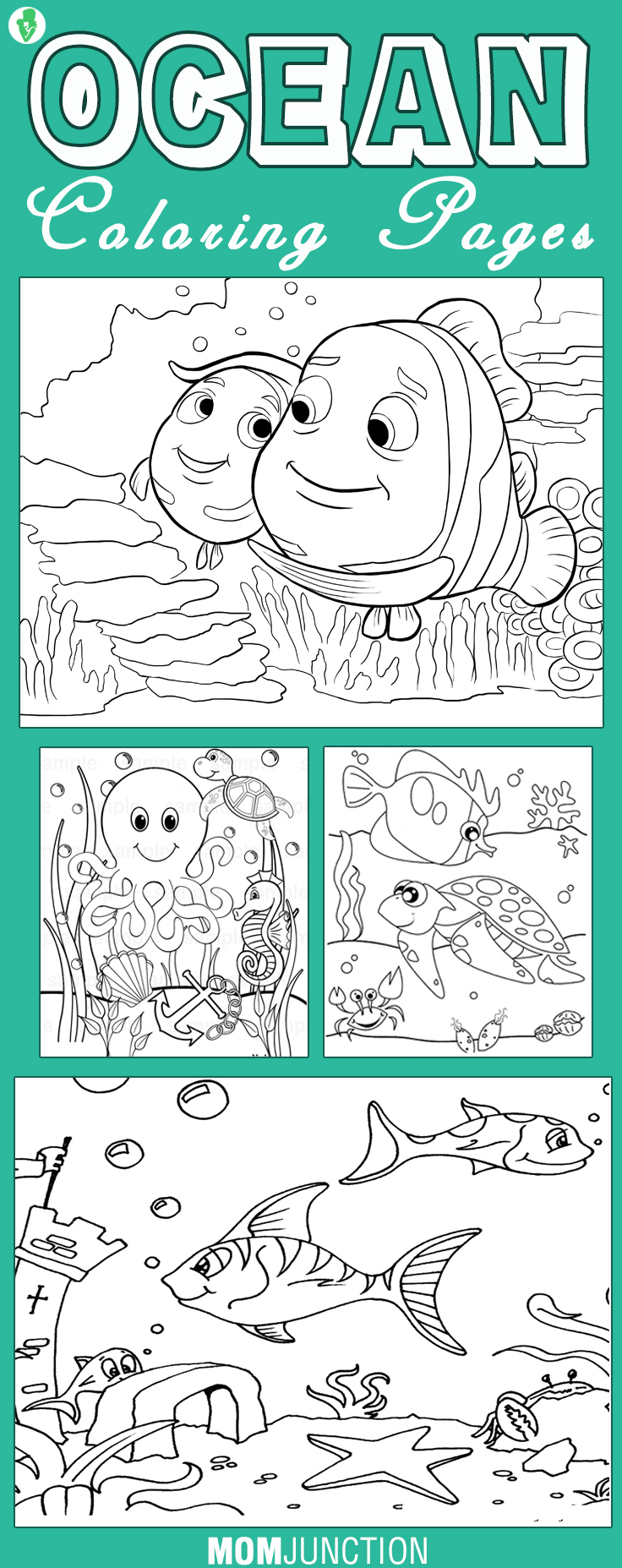 Coloring pages starfish intermediate - Coloring Pages Starfish Intermediate 42