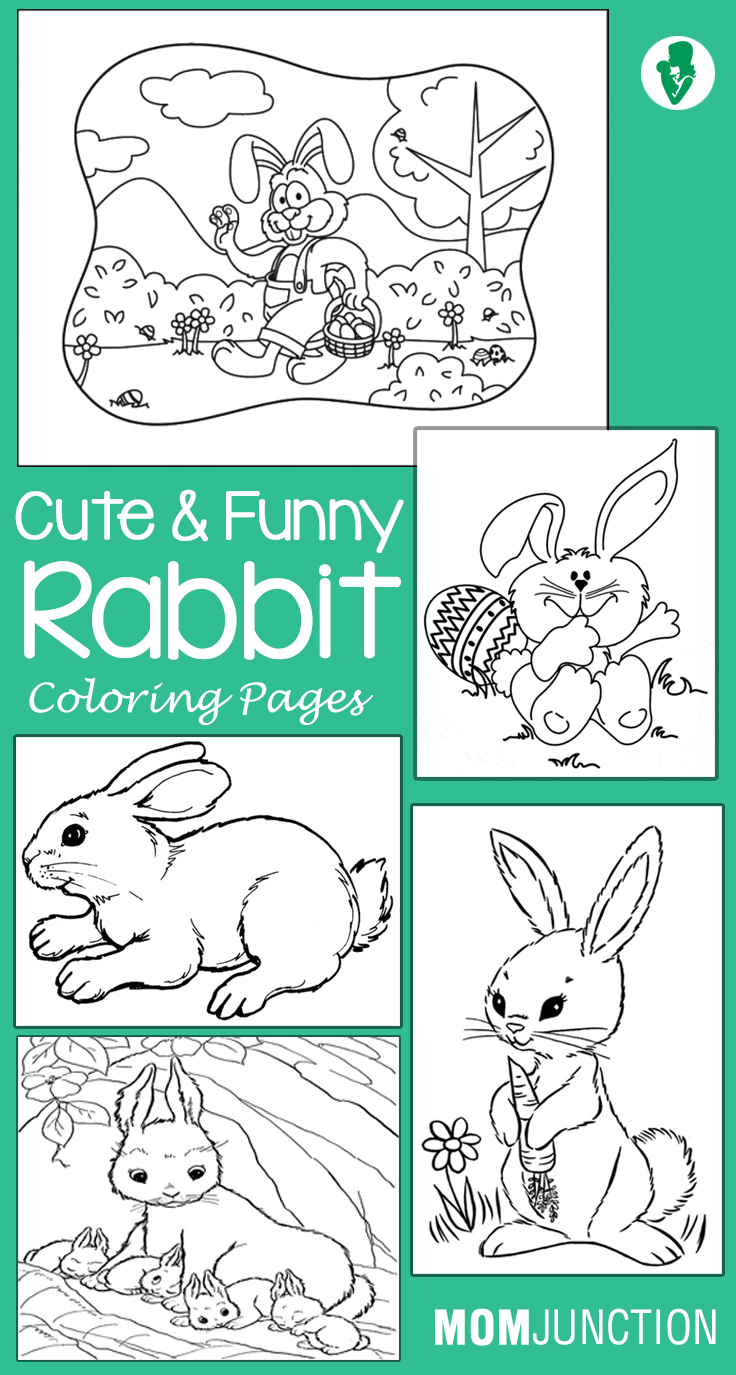 Coloring by numbers for rabbits - Coloring By Numbers For Rabbits 8