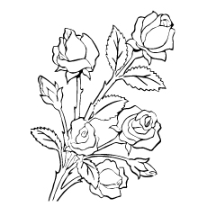 Five Roses Coloring Pages To Print Free