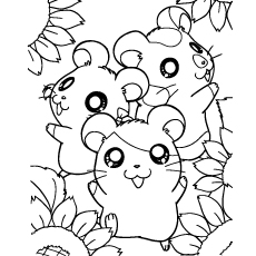 happy-hamsters-with-sun-flower