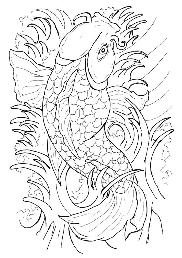 japanese_koi_fish_tattoo_flash_by_caylyngasm