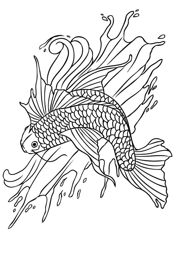 koi-fish-coloring