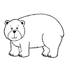 lovely-bear
