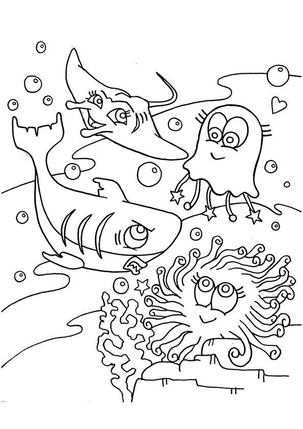 ocean-animal-wonderful