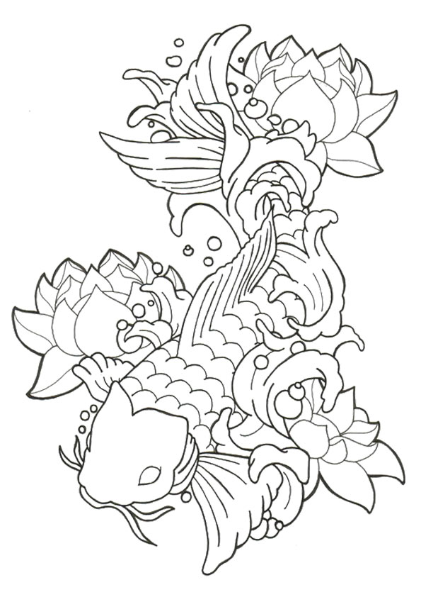 picture-of-Fish-With-Lotus
