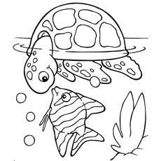 koi fish with turtle - Fish Coloring Pages