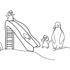 playing-penguins-16