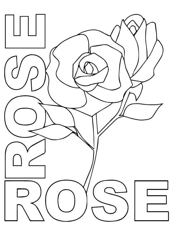 r-rosas