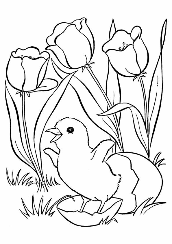 spring-coloring-book-371