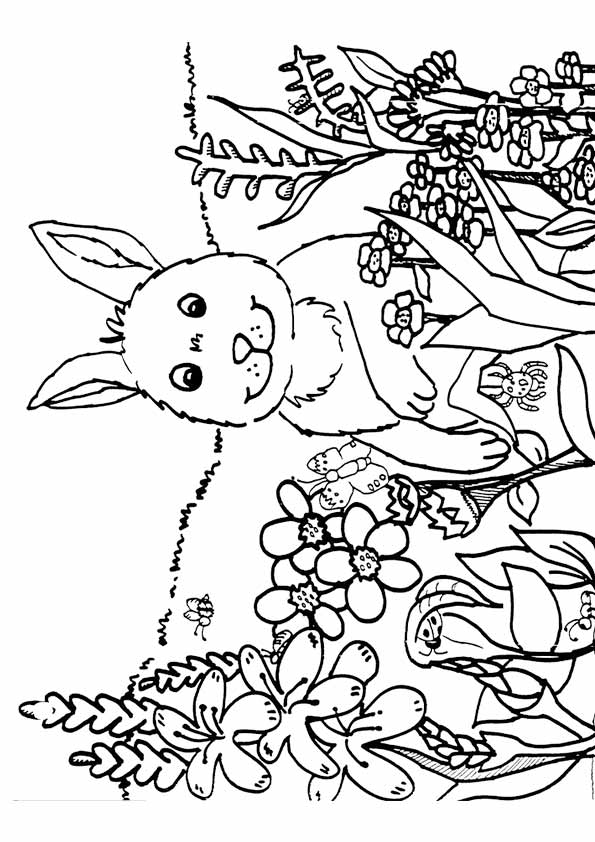 spring-coloring-pages-05