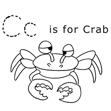 the c is sor crab
