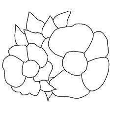 the-cherokee-rose