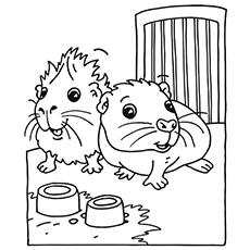 This is a graphic of Juicy Coloring Pages Of Guinea Pigs Homes