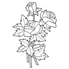 three-rosas