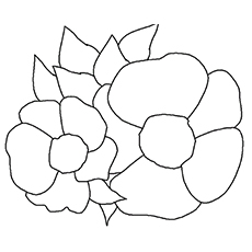 Cherokee Rose Coloring Sheet