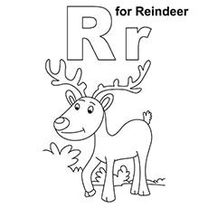 r for reindeer1
