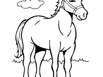 55 Best Horse Coloring Pages Your Toddler Will Love To Color