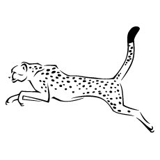 A Cheetah-jumping