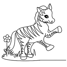 a funny little zebra coloring - Zebra Coloring Pages