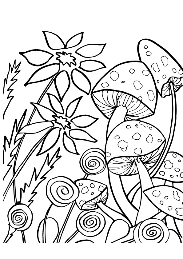 A-Mushroom-Coloring-flowers