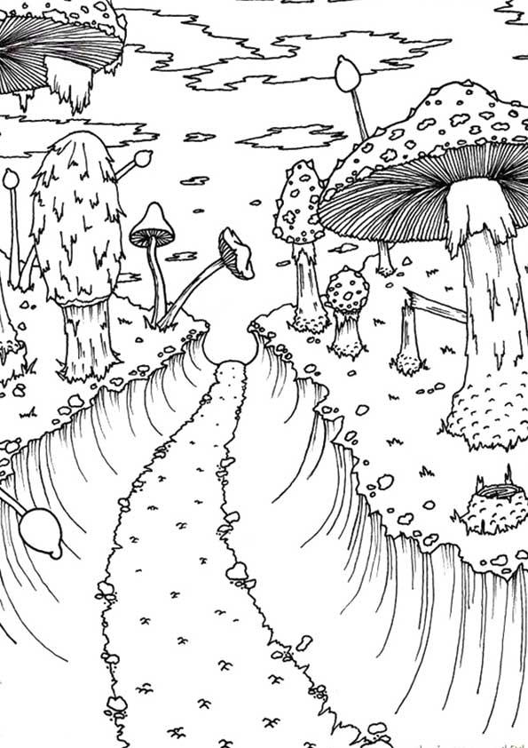 A-MushroomForestSmall