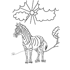 photograph relating to Zebra Printable identify Best 20 Cost-free Printable Zebra Coloring Webpages On-line