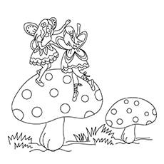 A-fairies-jumping-on-a-mushrooms-16