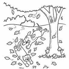 leaves falling from tree during autumn season picture leaves falling from tree during autumn coloring sheet of autumn leaves