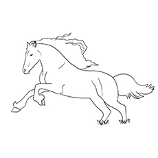 Black Stallion Horse coloring images