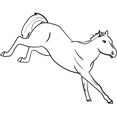 Bucking Horse coloring images