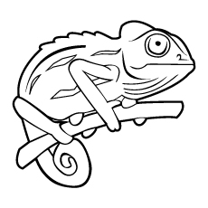 chameleon on tree bunch - Chameleon Coloring Pages Print