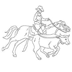 Cowbay5-16
