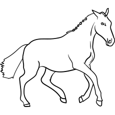 Danish Warmblood Horse coloring