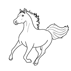 Picture of Dapple Grey Arabian Horse for Kids to Color