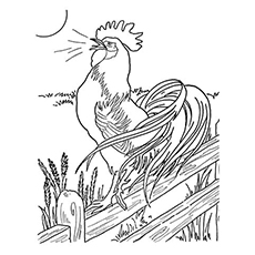 dawn rooster - Rooster Coloring Page