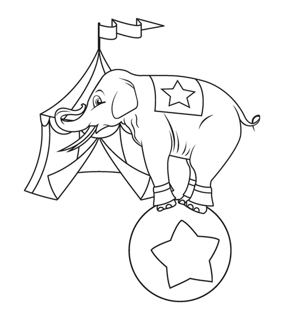 elephant coloring pages for preschool - photo#7