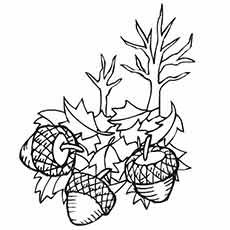 Coloring Pages of Acorns and Fall Leaves