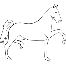 Hackney Horse coloring images