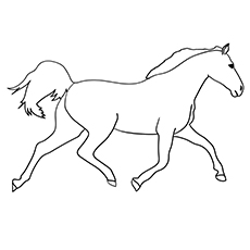 Holsteiner Horse Coloring Page
