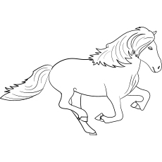 Icelandic Horse coloring images