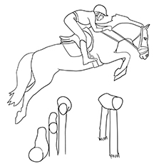 Irish Sport Horse Coloring Image