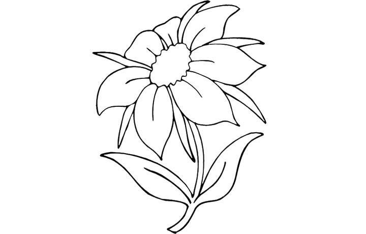 coloring pages flower petals - photo#16