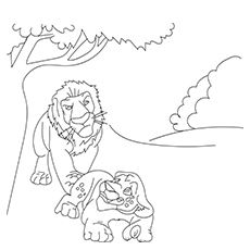 Kratts Lion 16