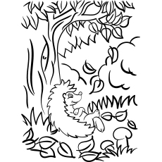 Coloring Page of Autumn Leave Falling From Tree
