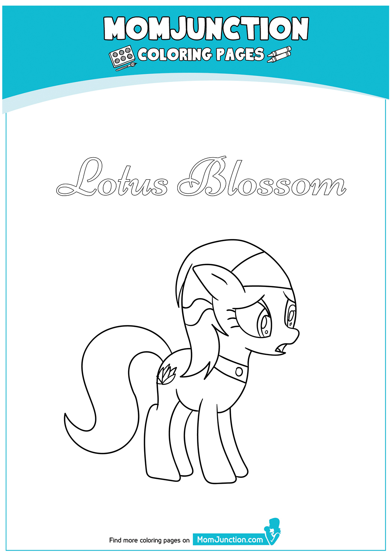 Lotus-Blossom-17