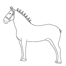 Percheron Horse Printable Coloring Page