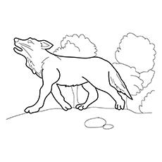Printable Gray Wolf Coloring Pages-16