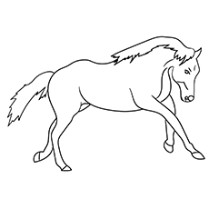 Worksheet of Quarter Horse to Color