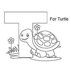 The-'T'-For-Turtle