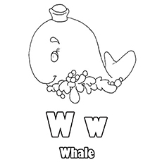 The-'W'-For-Whale